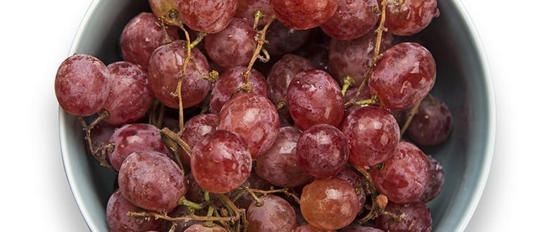 Grapes could protect against Alzheimers disease claims study