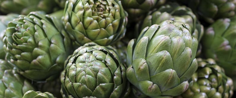 Grow Your Own Artichokes