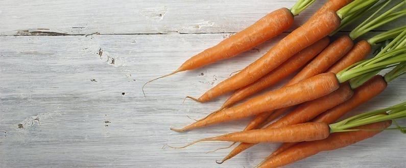 Grow Your Own Carrots or Parsnips