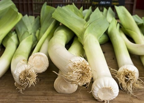 Grow Your Own Leeks