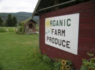 Regulation of Organic Food Production