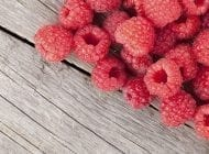 Grow Your Own Raspberries