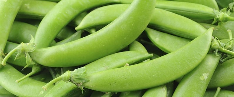 Grow Your Own Peas