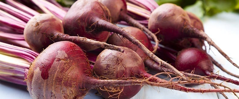 Grow Your Own Beetroot