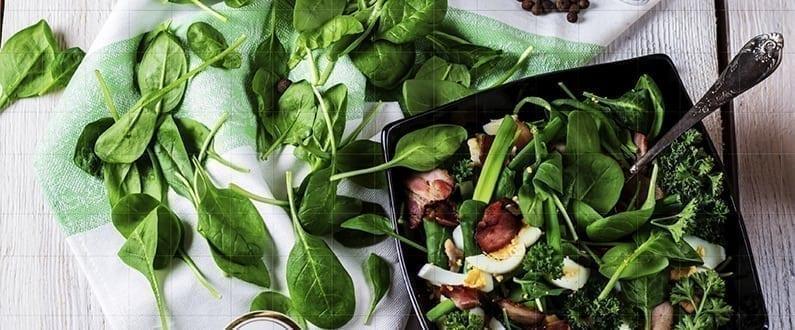 Fat Resistance Diet